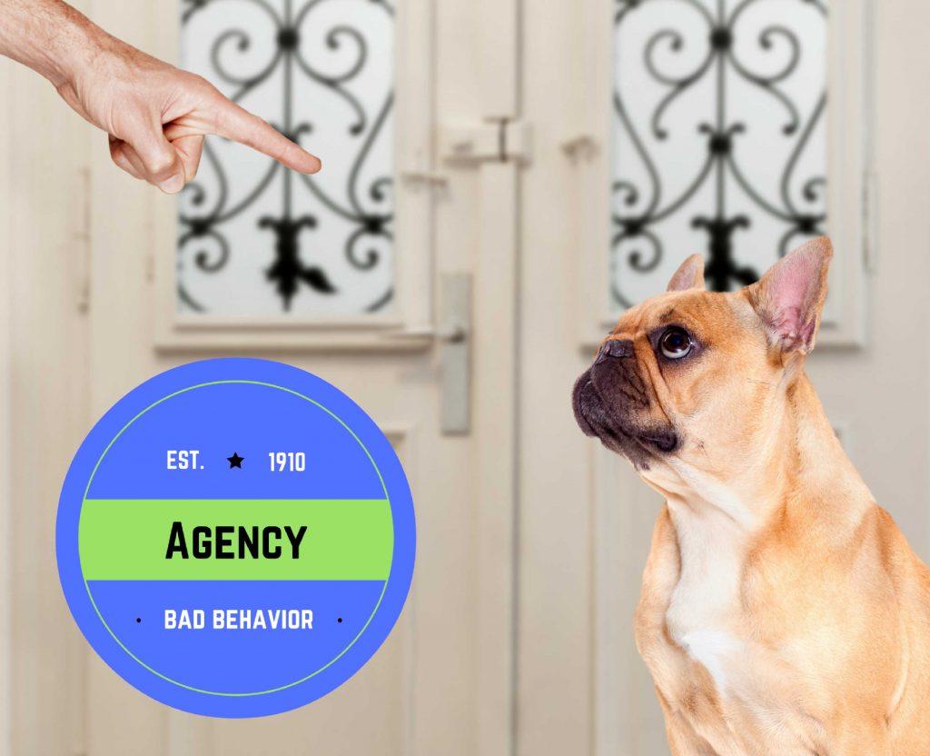 Agency Bad Behavior
