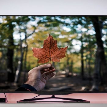 Maple leaf on TV screen