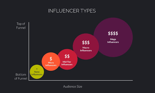 Influencer Types Infographic